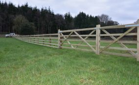 Post and rail fencing in field with double gate Near Equestrian Paddock