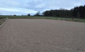 Outdoor riding arena with post and rail fencing and woodland in background