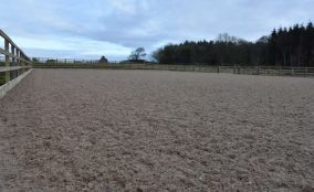 Sand and fibre riding arena surface