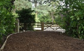 Wood Chip Access Road Leading Into Equestrian/Equine Riding Arena LocatedIn North Yorkshire With Timber Gate & Post And Rail Fence In View With Trees/Shrubs to the sides