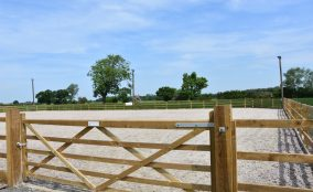 View Looking into the large equestrian, equine riding arena, with sand & fibre surface surrounded by timber post & rail fence with telegraph poles and arena lighting showing. Located In North Yorkshire Showing Timber 5 Bar Gate